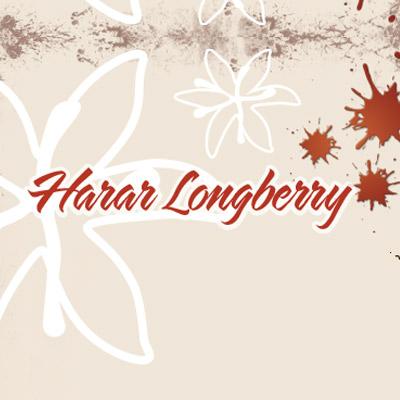 Kaffeebohne Harar Longberry